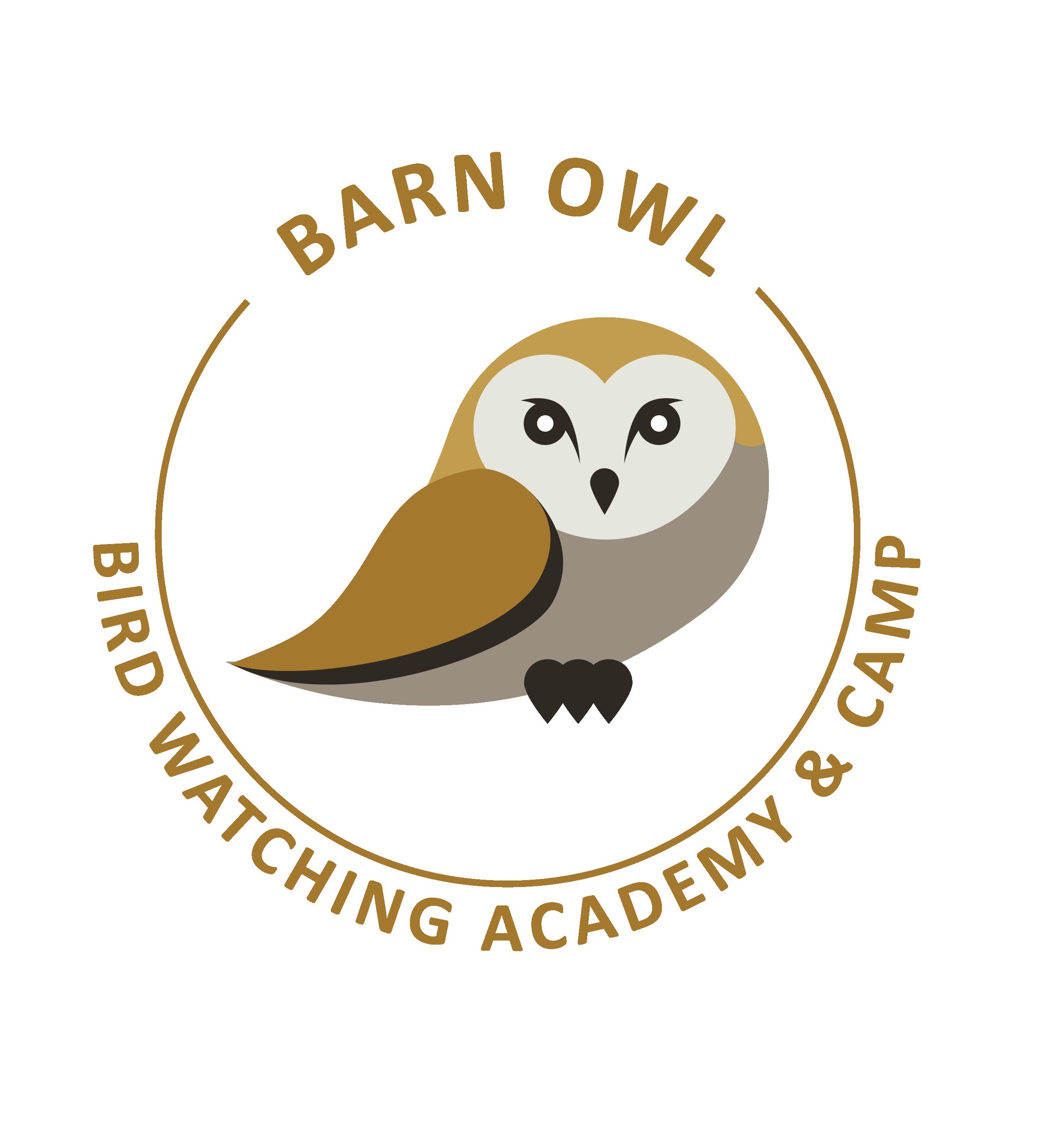 Barn Owl - Bird Watching Academy